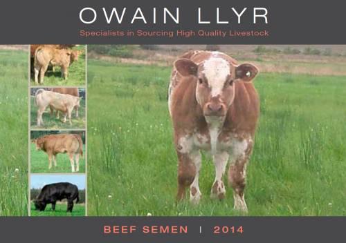 2014 Beef Semen Catalogue