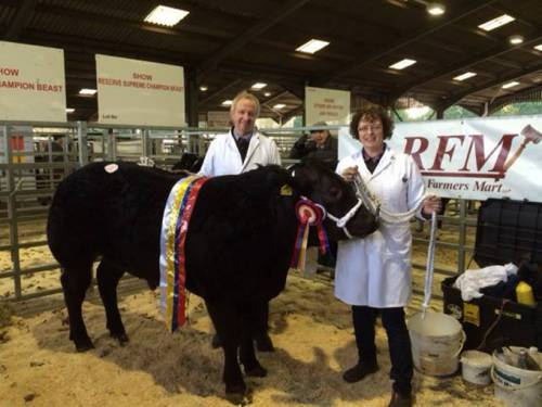 DOUDOU Sired Steer Wins Rugby Primestock Show