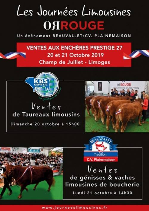 Sale of 60 Limousin Bulls - Limoges 20/10/2019