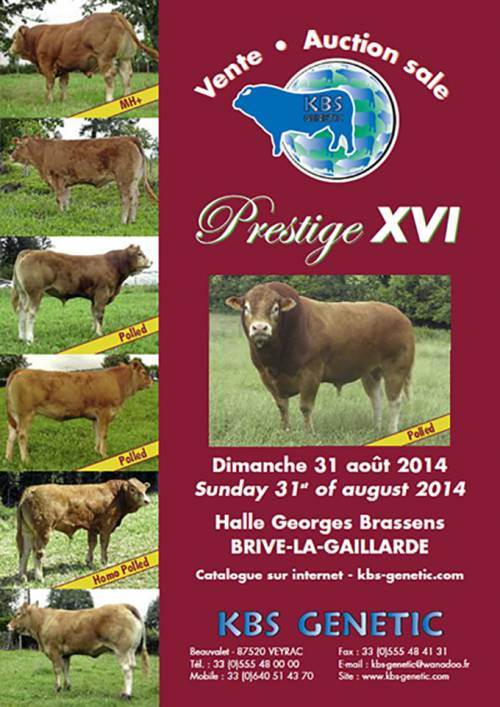 PRESTIGE XVI Sale at Brive, France 31st of August