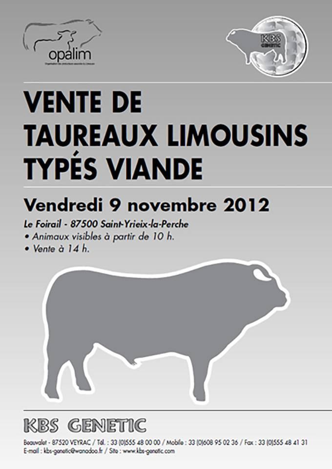 Vente De Taureaux Limousins Types Viande