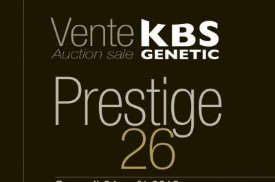 PRESTIGE 26 Auction Sale at Brive, France - Saturday 24th of August